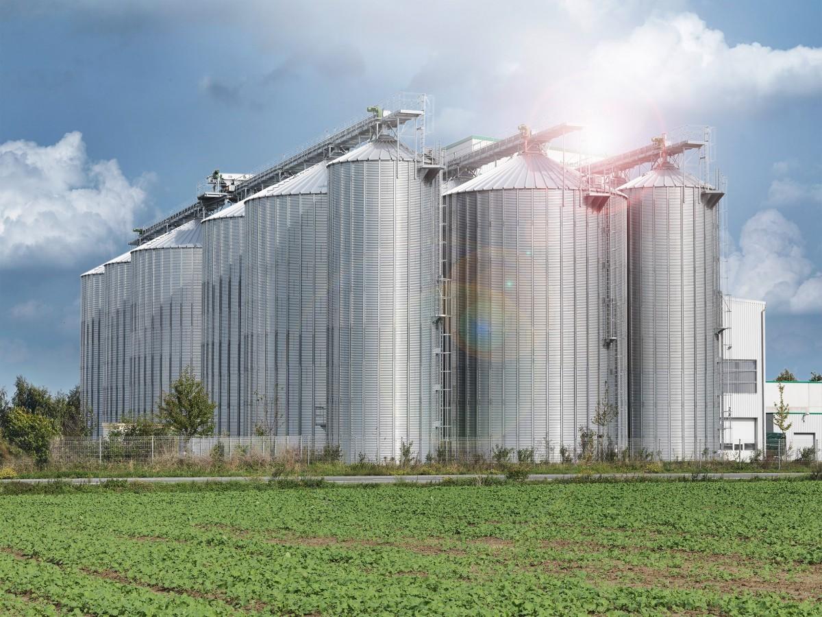 Buir-Bliesheimer Agragenossenschaft eG,  41569 Rommerskirchen